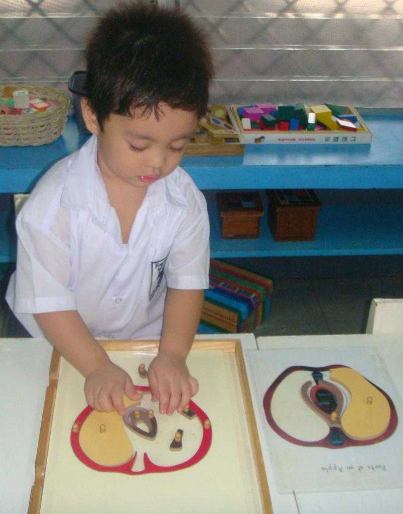 Regina Maria Montessori science